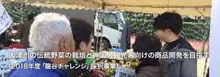 大津市の伝統野菜の栽培と外国人観光客向けの商品開発を目指す(2018年度「龍谷チャレンジ」採択事業)